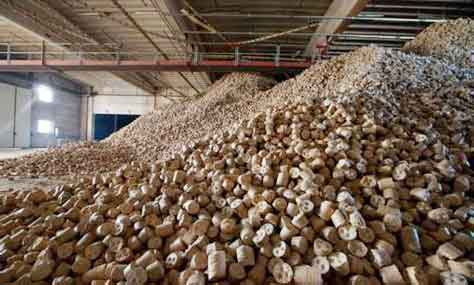 biomass briquette stored in warehouse
